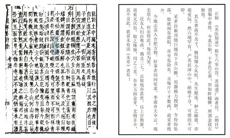 斛生记|霍山石斛|本草历史